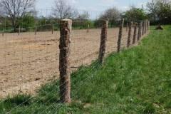 Bylinkové pole
